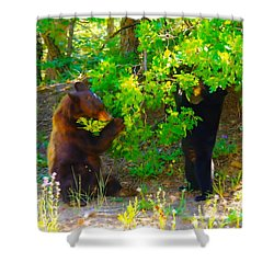 Mother Bear And Cub Shower Curtain by Jeff Swan