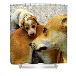 Mother's Affection Shower Curtain