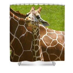 Mother's Child Shower Curtain