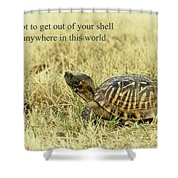 Motivating A Turtle Shower Curtain by Robert Frederick