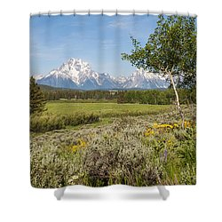 Mount Moran View Shower Curtain by Brian Harig