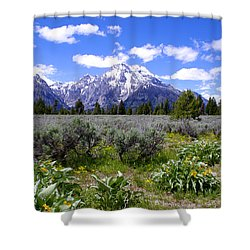 Mount Moran Wildflowers Shower Curtain by Brian Harig