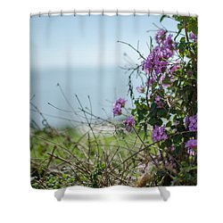 Mount Of Beatitudes Shower Curtain