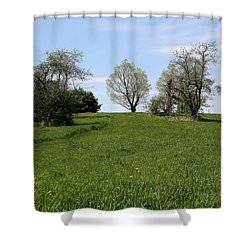 Mount Pollux Shower Curtain by Randi Shenkman