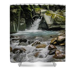 Mount Rainier Falls Shower Curtain