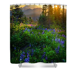 Mount Rainier Sunburst Shower Curtain by Inge Johnsson