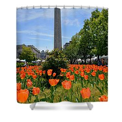 Mount Vernon Place Shower Curtain by Brian Wallace