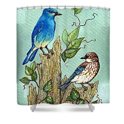 Shower Curtain featuring the painting Mountain Bluebirds by VLee Watson