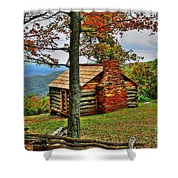 Mountain Cabin 1 Shower Curtain by Dan Stone