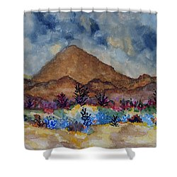 Mountain Desert Scene Shower Curtain by Connie Valasco
