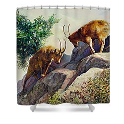 Mountain Goats - Powerful Fight  Shower Curtain