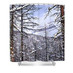 Mountain Landscape Shower Curtain by Elena Elisseeva