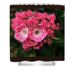 Mountain Laurel ' Olympic Fire ' Shower Curtain by William Tanneberger