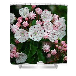 Mountain Laurel Shower Curtain by Annlynn Ward