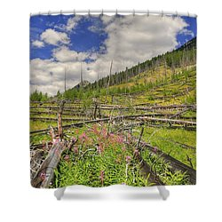 Mountain Meadow In Banff Shower Curtain by Jim Sauchyn