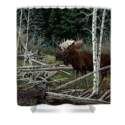 Mountain Monarch Shower Curtain by Craig T Burgwardt