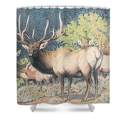 Mountain Monarch Shower Curtain