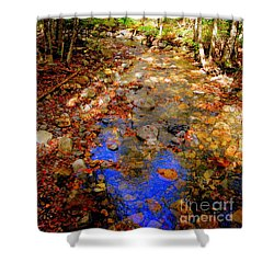 Mountain Stream Covered With Fall Leaves Shower Curtain