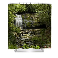 Mountain Stream Falls Shower Curtain
