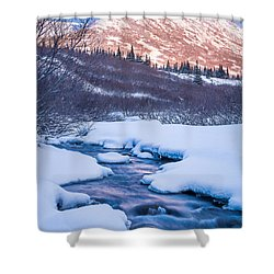 Mountain Stream In Winter Shower Curtain