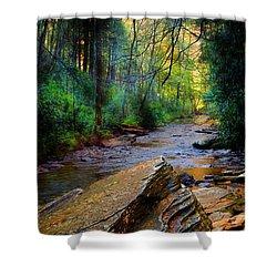 Mountain Stream N.c. Shower Curtain