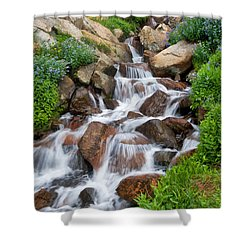Shower Curtain featuring the photograph Mountain Stream by Ronda Kimbrow