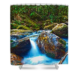 Shower Curtain featuring the photograph Mountain Streams by Alex Grichenko
