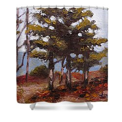 Mountain Top Pines Shower Curtain by Jason Williamson
