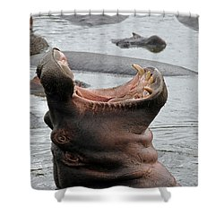 Mouth Wide Open Shower Curtain