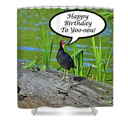 Mouthy Moorhen Birthday Card Shower Curtain
