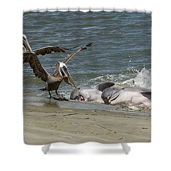 Moveable Feast Shower Curtain