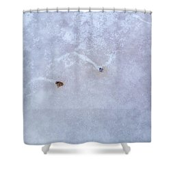 Moving Through Ice Shower Curtain