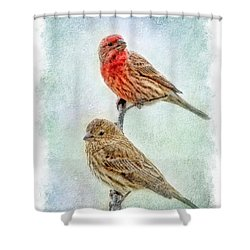 Mr And Mrs House Finch Digital Paint With Frame Shower Curtain by Debbie Portwood
