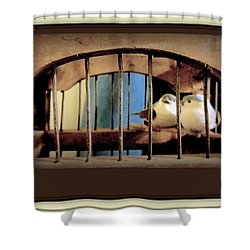 Mr. And Mrs Tweety In Sepia  Shower Curtain by Danielle  Parent