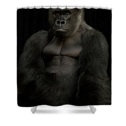 Mr. Big Shower Curtain