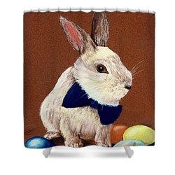 Mr. Rabbit Shower Curtain by Anastasiya Malakhova