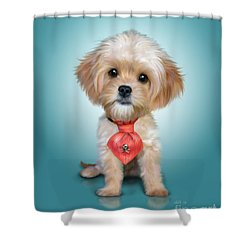 Mr. Toby Waffles The Cavapoo Shower Curtain by Catia Cho