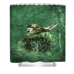 Mrs. Rufous Shower Curtain