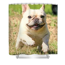 Ms. Quiggly's Olympic Run Shower Curtain