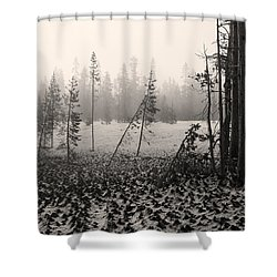 Mt Bachelor Warm Tone Shower Curtain