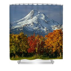 1m5117-mt. Hood In Autumn Shower Curtain
