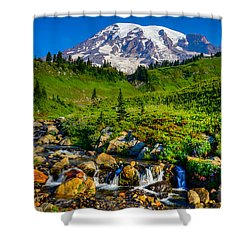 Mt. Rainier Stream Shower Curtain