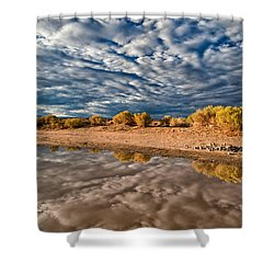 Mud Puddle Shower Curtain by Cat Connor