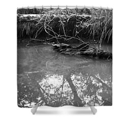 Muddy Creek Shower Curtain by Adria Trail