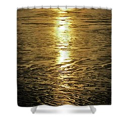 Shower Curtain featuring the photograph Muddy Reflection by Jeremy Rhoades