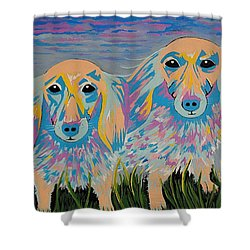 Mugi And Tatami - Contemporary Dachshunds Dog Art Shower Curtain