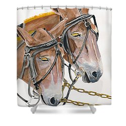 Mules - Two - Beast Of Burden Shower Curtain