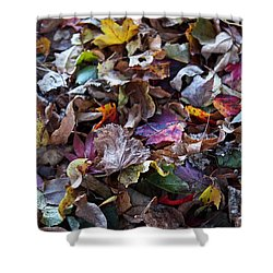 Multicolored Autumn Leaves Shower Curtain by Rona Black