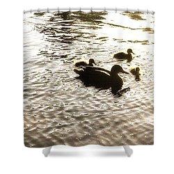 Mumma Duck And Ducklings Shower Curtain