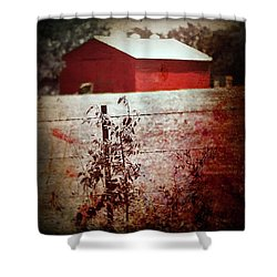 Murder In The Red Barn Shower Curtain by Trish Mistric